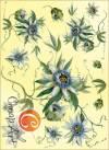 Декупажная карта А4 Загадочный цветок