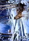 Декупажная рисовая карта ProArt, 13,5х19см, Волки