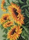 Рисунок на канве 19х26см (28х37см) Подсолнухи