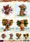 Набор карт серии Медведи Popcorn