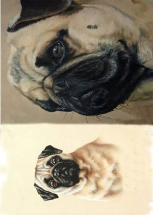Декупажная рисовая карта ProArt, 13,5х19см, серия Собаки