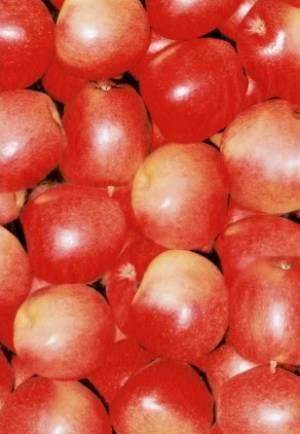 Бумага DECOPATCH Яблоки красные