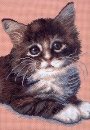 Рисунок на канве 28х37см Кот Борис