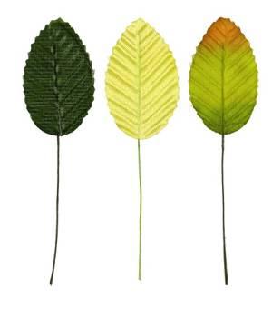 Декоративные элементы Листья, 5х3см, 10шт., микс цветов